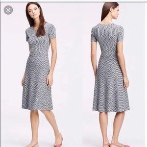 Ann Taylor midi fit and flare knit dress